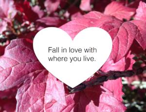 Pringle Creek Love